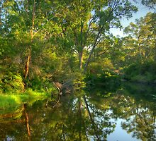 Megalong Reflections - Blue Mountains, West Of Sydney - The HDR Experience by Philip Johnson