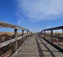 Boardwalk by smalletphotos