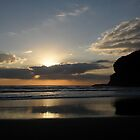 ~` Beautiful Bethells Beach by chrissy mitchell