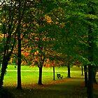 Autumn Seat by Iani