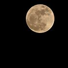 Perigee Moon by TheWalkerTouch