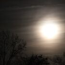 Super Full Moon by Elspeth  McClanahan