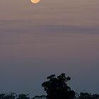 Big Moon Rising by Murray Wills