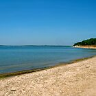 Shore of Lake Texoma by Ashleigh Johnson