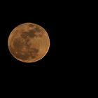 Lunar Perigee Rising by Groovydawg