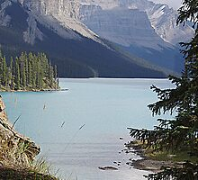 Lovely Maligne by Jann Ashworth