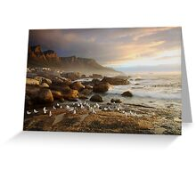 Sunset with the seagulls Greeting Card