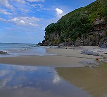 Coastal - Waihi Beach, Bowentown, New Zealand - A Touch of Paradise by Kay M Gregan
