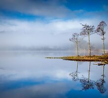 Loch Ard ,Trossachs , Scotland by David Mould