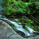 Erskine Falls by S T