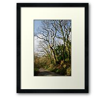 Country Lane - Luxulyan Valley, Near S Austell, Cornwall Framed Print