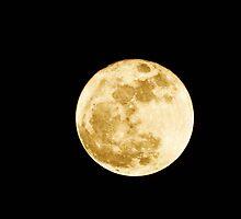 Moon Dance in sepia by mltrue