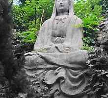 Tian Fo Shan Bhudda by Phillip Wayne