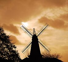 West Blatchington Mill by inglesina