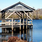 On The Perquimans River by WeeZie