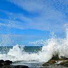 Breaking Wave by Margaret Stevens