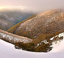 Foggy Dawn, Mt Hotham, Australia by Michael Boniwell