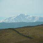 Pikes Peak ..headed south by Marijane  Moyer