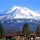 Mt Shasta Calif in the winter by Charles Hallsted