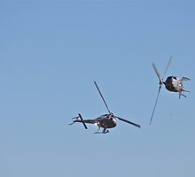 Pair of Royal Australian Navy Squirrel Helicopters by LJ_©BlaKbird Photography