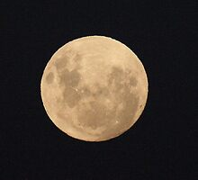 Super moon by Denzil