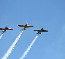 The Southern knights Smokin' up the skies. by LJ_©BlaKbird Photography