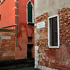 Venice in Colour by Tiffany Dryburgh