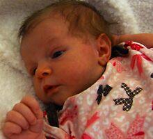 An Angel Is Born by Gail Bridger
