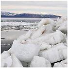 Ice Chips by Virag Anna Margittai