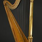 Antique Harp -1900's Era Wurlitzer Harp by Stephen Beattie