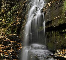 Autumn At The Falls by Stephen Vecchiotti