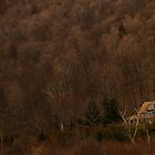 Brown House - Labrador Hollow Unique Area, NY by nitsmule