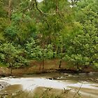 Yarra River at Pound Creek by wolfmarx