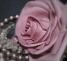 Bridal Pink by Julesrules