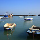 Folkestone Harbour, Kent by Liz Garnett