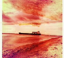 Ships Passing Through- Series No.1 by LJ_©BlaKbird Photography