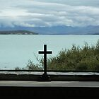 View from Church onto Lake Tekapo, New Zealand by bm220