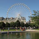 Paris wheel in park  by machka