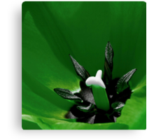 *Green Tulip Macro* Canvas Print