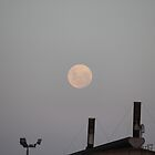 Supermoon 2011 Closest to Earth since 1993. by LJ_©BlaKbird Photography