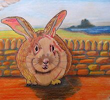 331 - LINDISFARNE BUNNY - DAVE EDWARDS - COLOURED PENCILS - 2011 by BLYTHART