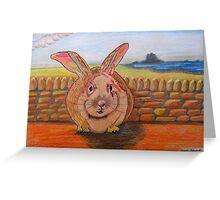 331 - LINDISFARNE BUNNY - DAVE EDWARDS - COLOURED PENCILS - 2011 Greeting Card