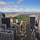 View over Central Park by vivsworld