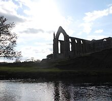 Bolton Abbey, Yorkshire, UK by skiptonred