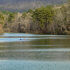Oak Mountain Lake by Jacqueline Ison