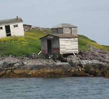 Little Fogo Island by cull75