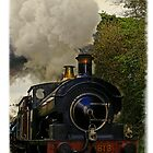 Steam train, East Somerset Railway, UK by buttonpresser