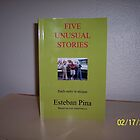 FIVE UNUSUAL STORIES by estebanpina