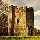 Lanestown Castle. by Finbarr Reilly