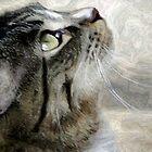June Cash Kitty by Loree McComb
